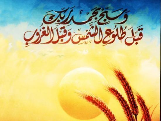 Quelle est la signification des différents mouvements de la prière? - Islamiates