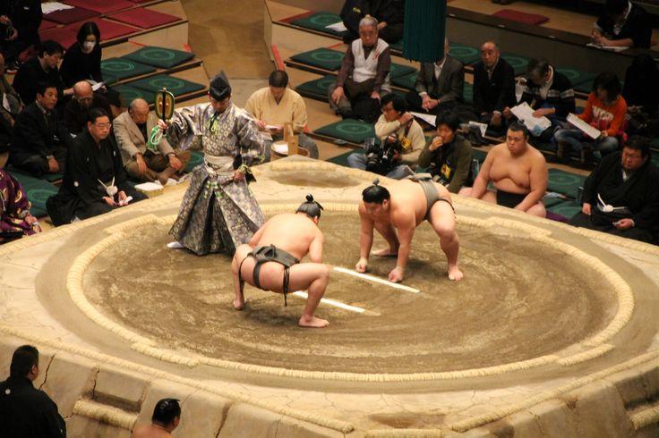Sumo Wrestling! (Tokyo) #sumo