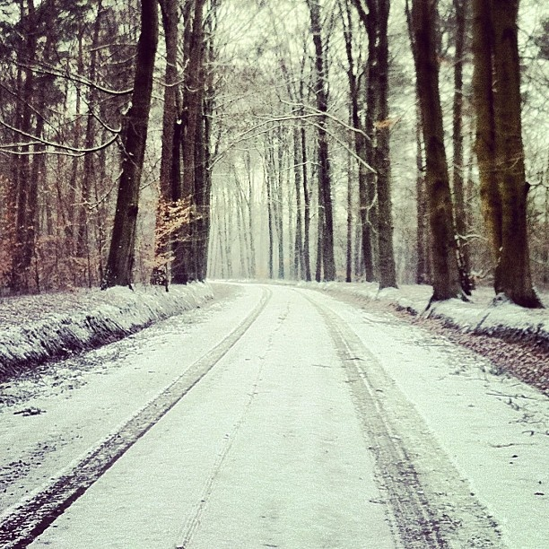White easter  in Twente - @marcel_tettero- #webstagram Delden Hof van Twente