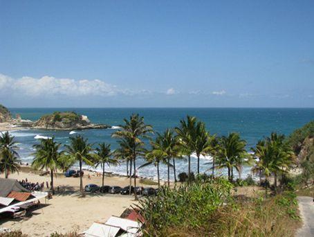 Nyiur hujau di Pantai Klayar, Pacitan, Jawa Timur