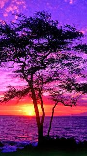 The Nicest Pictures: Sunset, Maui, Hawaii