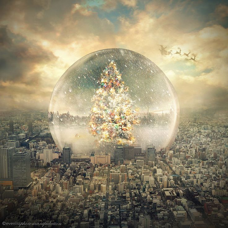 snow globe   Even Liu