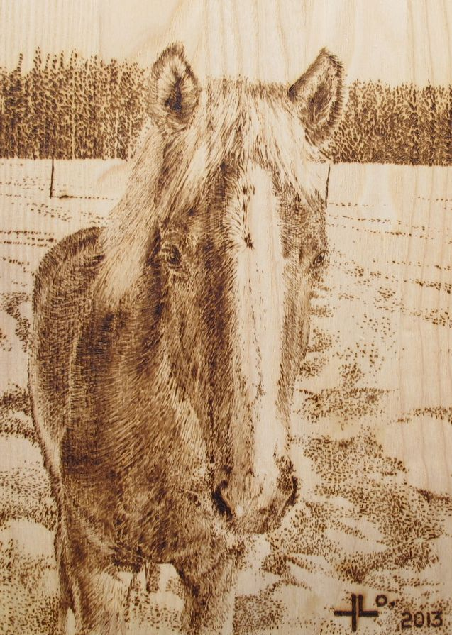 """""""Horse in winter 1"""" 2013.  This pyrography was for a client who loves horses and riding :)."""