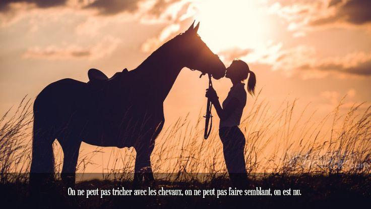 On ne peut pas tricher avec les chevaux, on ne peut pas faire semblant, on est nu.