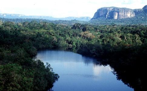 El mayor parque es el «Parque Nacional Natural Serranía de Chiribiquete», situado en los departamentos de Caquetá y Guaviare, con una extensión de 1.280.000 ha, un área de bosques, sabanas inundables y cerros.