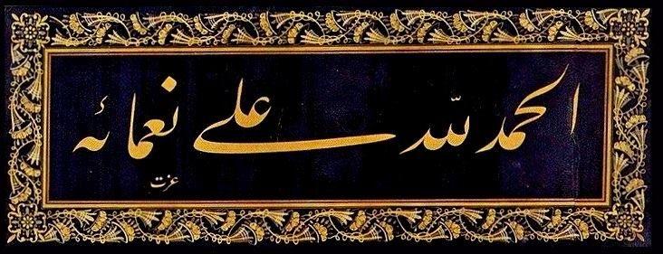 ELHAMDÜ LİLLAHİ ALÂ Nİ'AMÂİHİ (verdiği ni'metleri için Allah'a hamd ederim.) hattat: kazasker mustafa izzet, ta'lîk