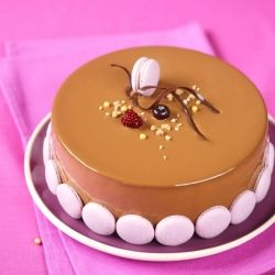 A collection of entremet recipes