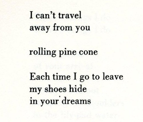 38 best images about poetry on Pinterest