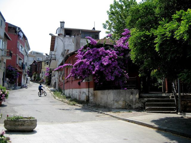 Living Rootless: Flashback to July 2012: Istanbul: Heybeliada Islan...