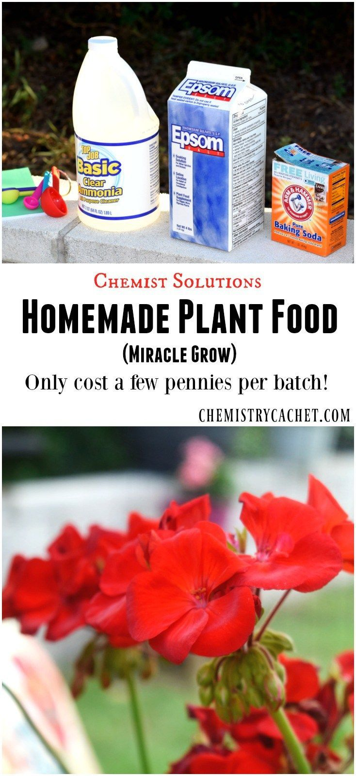 Easy Homemade Plant Food Recipe (Miracle Grow)! This post is part of the chemist solutions series, sharing awesome knowledge for you on chemistrycachet.com