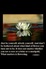 Osho, nonduality, spiritual awakening, remembering who you really are, ronda larue at OjaiSoulArts.com - private guided retreats
