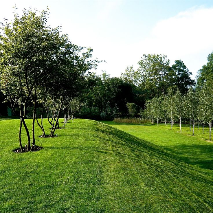 Joanne_Alderson_Garden_Design_Oxfordshire_Estate_2