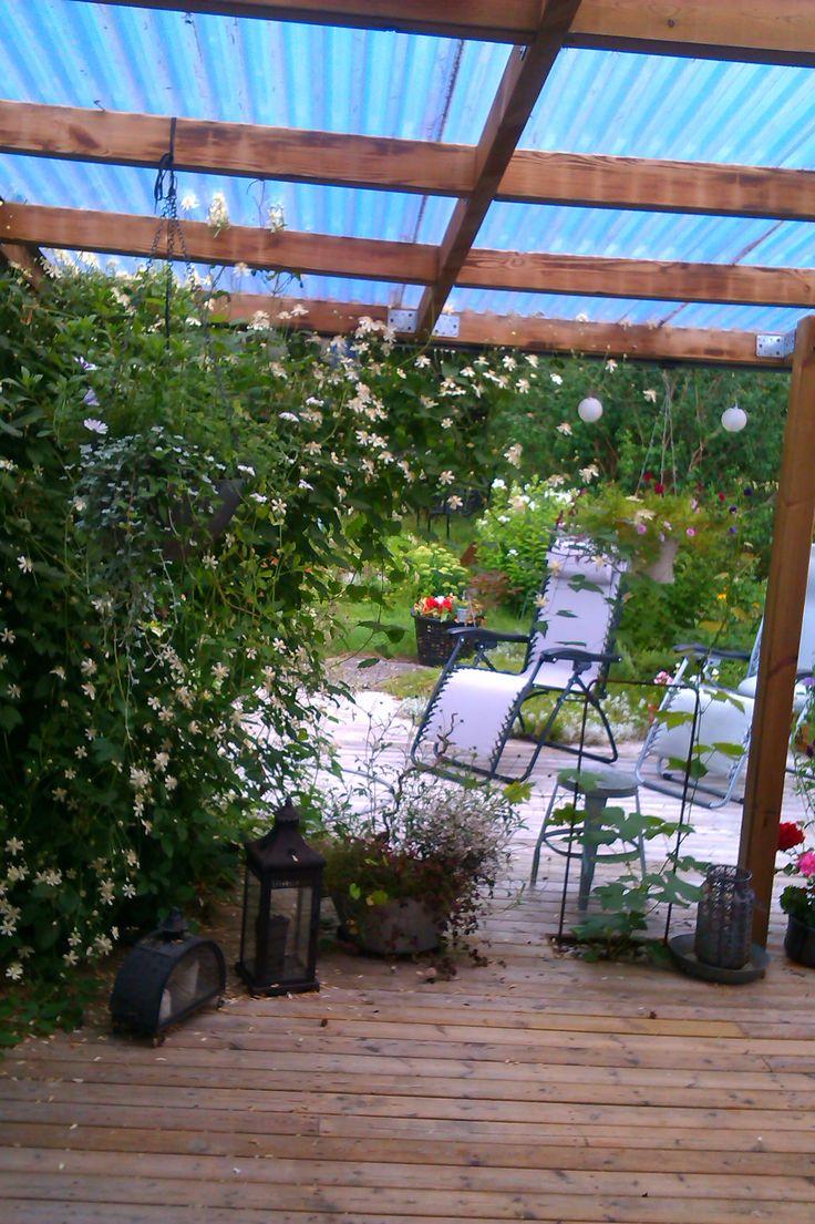Small garden, patio