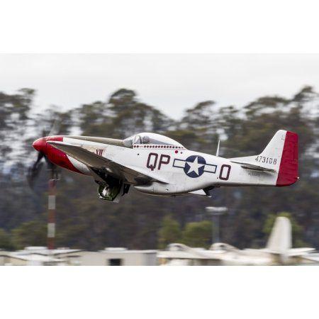 A P-51 Mustang takes off from Santa Rosa California Canvas Art - Rob EdgcumbeStocktrek Images (17 x 12)