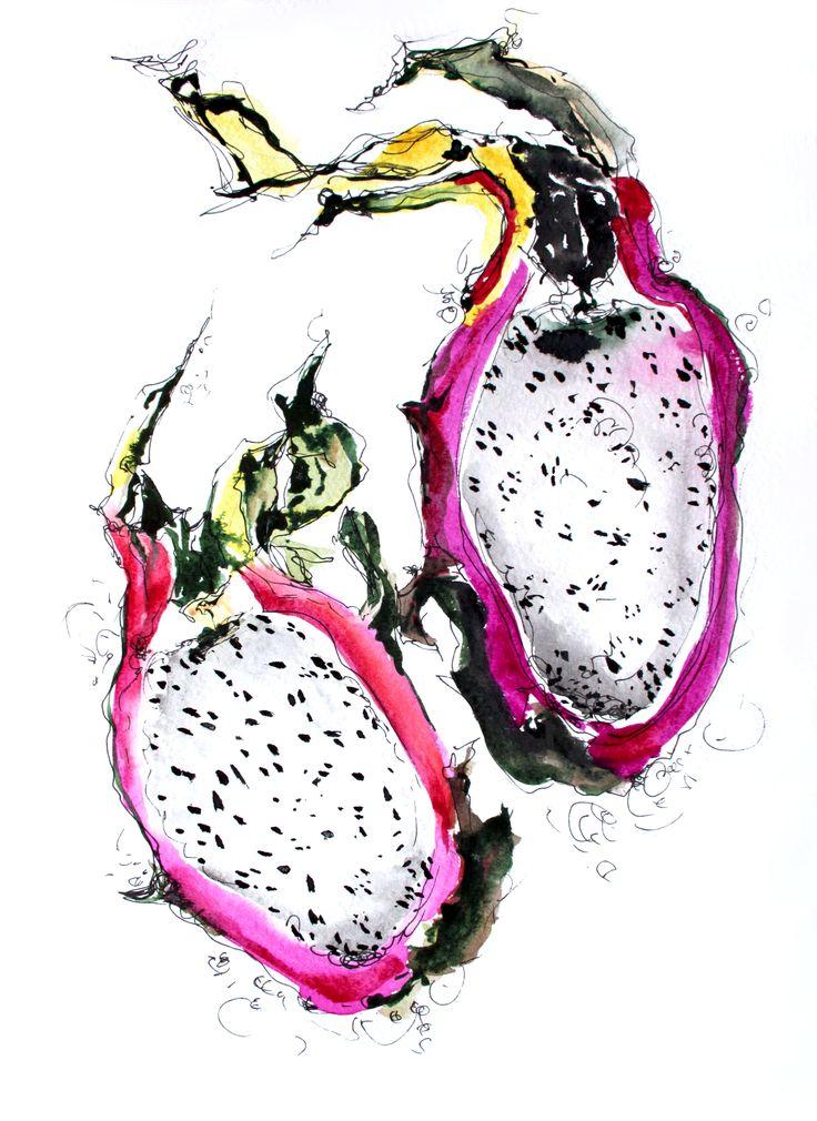 Pitaya dragon fruit watercolor food illustration