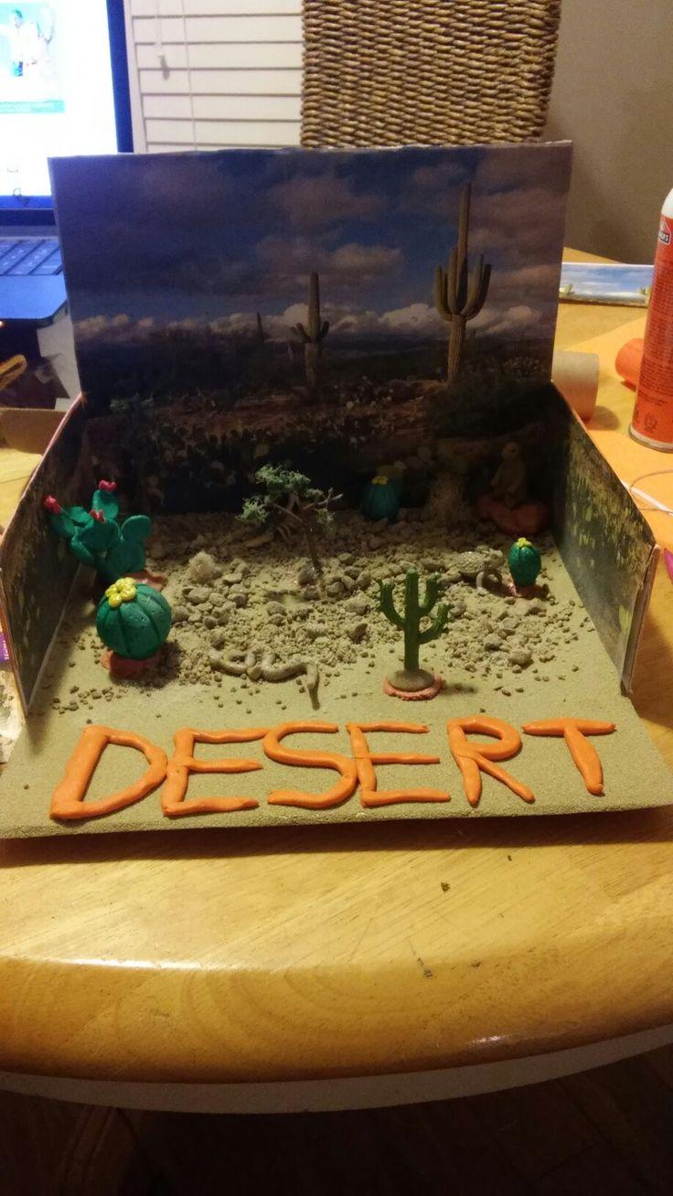 essay on desert biome