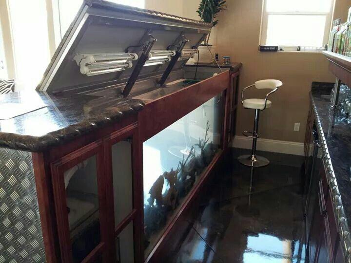 Fish tank bar home design pinterest fish tanks bar for Fish tank bar