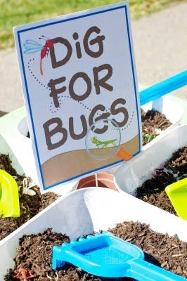 dig for bugs ~ party game activity - did this in 2002- before Pinterest