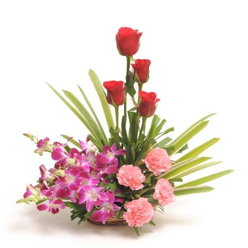 Ferns n Petals brings this elegant and magnificently charming basket arrangement of 4 purple orchids, 4 pink carnations and 4 red roses with lots of arica palm leaves. This handmade basket is just the perfect to make the day for your loved one and inspire a smile on their face. http://www.fnp.com/flowers/inspiration/--clI_2-cI_1678-pI_27421.html