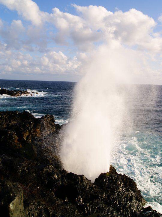 Souffleur - Île de la Réunion