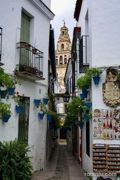 Rincones-de-Córdoba-que-enamoran-006.jpg 669×1.000 píxeles