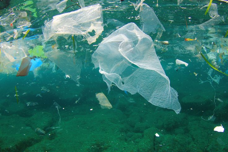 """It's not one big """"trash island,"""" but the Great Pacific Garbage Patch is Earth's largest dump, and its poster child for plastic pollution."""