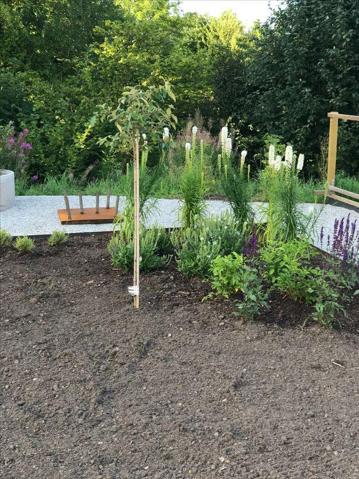 Andra änden har också fått lite plantor. Blå och vit stäppsalvia, lavendel, astilbe, vit rosenstav och ett Olvon-träd.