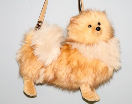 purse pom. solving the dilemma of getting the right bag to match your dog.
