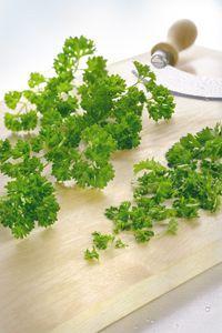 herbes aromatiques bio persil friséPhotos réalisées pour plv et argumentaire pour les herbes aromatiques BIO de Darégal. Vous pouvez retrouver toutes ces herbes aromatiques sur le site Darégal.