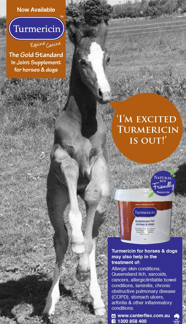 Turmericin - (for horses & dogs)   	 allergic skin conditions, Queensland itch, sarcoids,  	 cancers,   	 allergic/irritable bowel conditions,   	 laminitis,   	 chronic obstructive pulmonary disease (COPD),   	 stomach ulcers,  	 arthritis & other inflammatory conditions.
