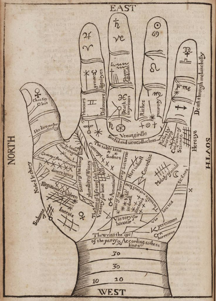 Antique Print Hand Fortune Teller's Hand by missquitecontrary