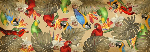 Birdland by Marica Zottino, via Behance