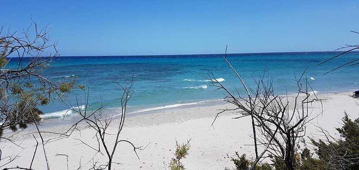 La hermosa y alejada playa Bidderosa - http://www.absolutitalia.com/la-hermosa-alejada-playa-bidderosa/