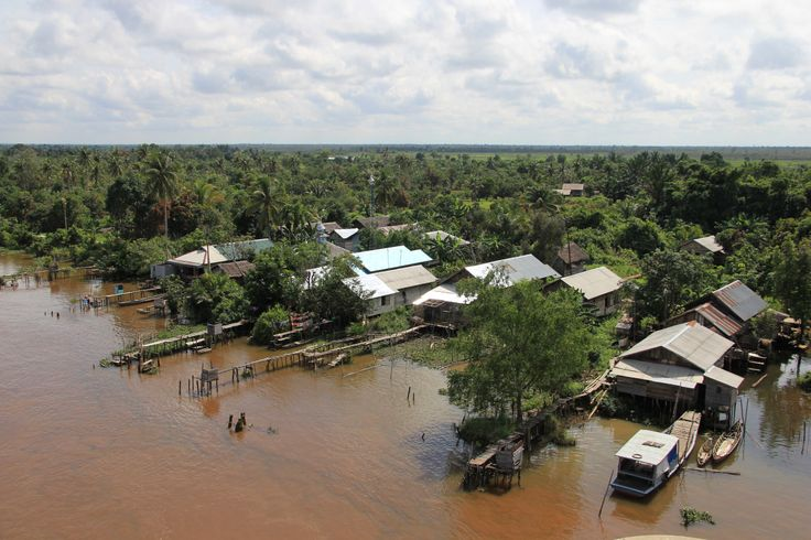 Kampung pesisir sungai Barito