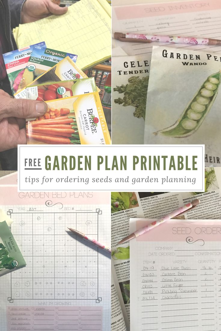 25 best ideas about Printable Garden Labels on Pinterest