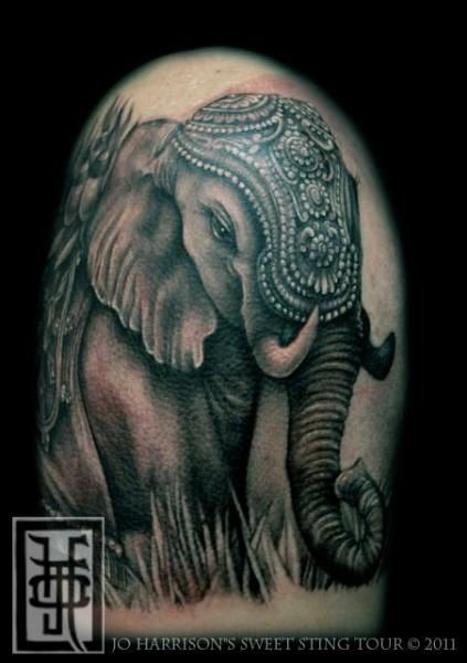 elephant tattoos | Realistic Elephant Tattoo by Jo Harrison