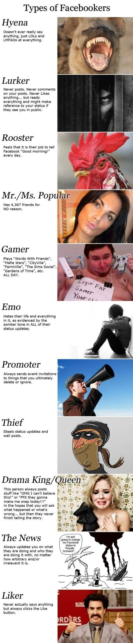 Different kinds of #Facebookers. :)