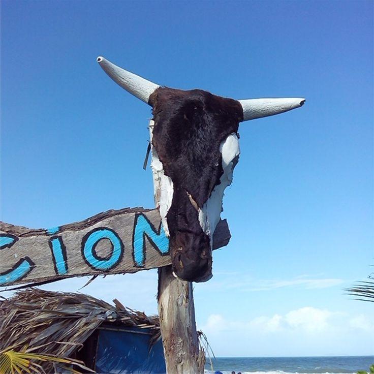 En Playa Parguito, Margarita.