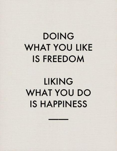 Doing what you like is freedom; liking what you do is happiness (www.thecultureur.com)