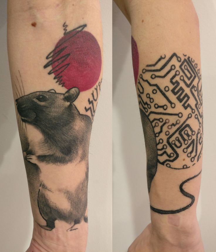 Hey Sloth Tattoo person! Here is my 80's cyber rat from the same place! By: Matt Hunt MBA Birmingham UK