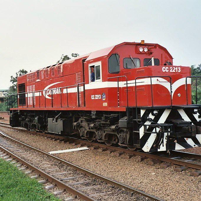 L'opérateur ferroviaire Camrail, filiale du français Bolloré BOLL.PA , est totalement et pleinement responsable d'un accident de train qui a fait au moins 79 morts en octo