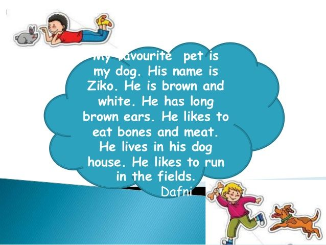 Write A Paragraph About My Pet Dog - Vision professional