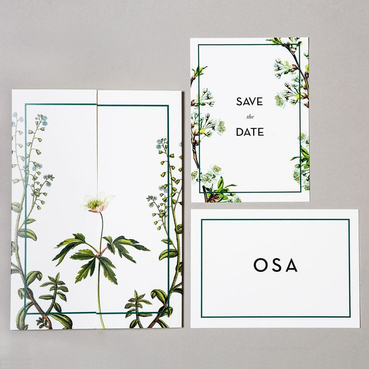 Linné Wedding Save the Date, Invitation and RSVP - Botanical Flowers - www.postedwithlove.com