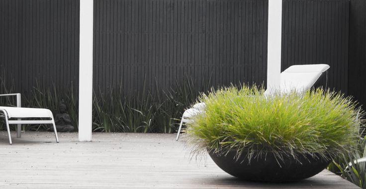 Low bowl with grasses www.jamesrosslandscape.com.au
