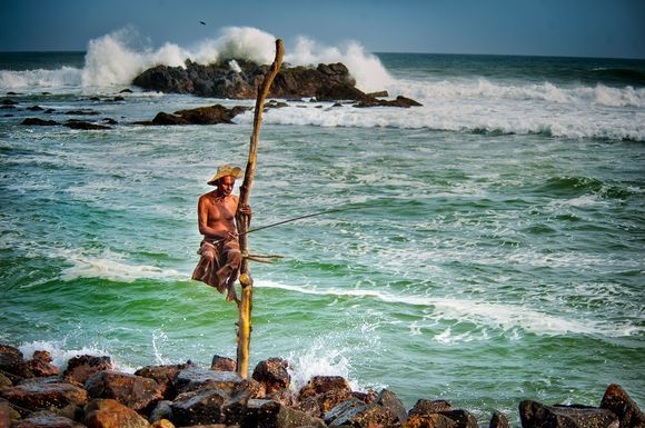 Traditional Stilt Fishing. Sri Lanka