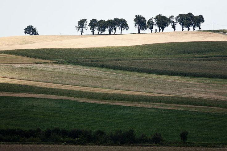 Polish Tuscany :)
