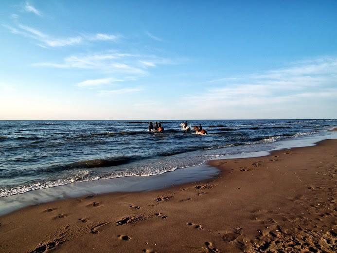 Na plaży w Trzęsaczu