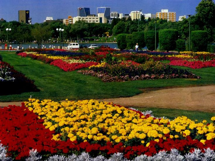 Regina, Saskatchewan, Canada...the flowers and the city were truly this beautiful!!  loved the flower gardens!!