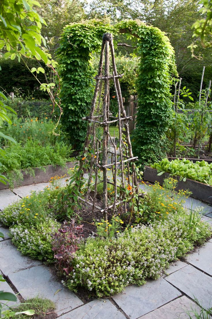 Rustic Tuteur -Trellis with herbs in the center of a Potager - Vegetable garden. Made from simple cut branches and twigs. How clever and pretty. Need to put this on the 'to do list''