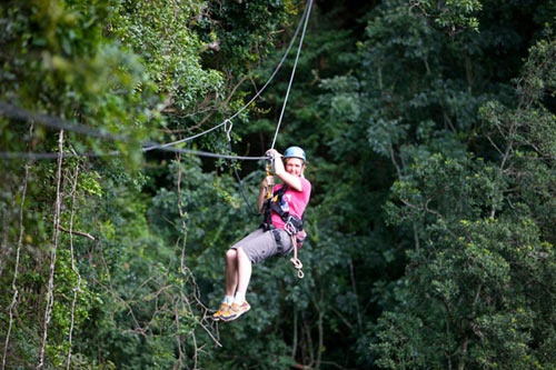 Experience nature like never before as you slide through the forest canopy and enjoy a unique birds-eye view on the world around you. Set within the magnificent Blue Grotto forest, the Drakensberg Canopy Tour® is guaranteed to take your breath away. The forest is home to over 150 species of birds including the rare Bush Blackcap.